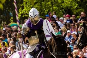 The Renaissance Festival Jousting Event