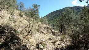Hiking in New Mexico